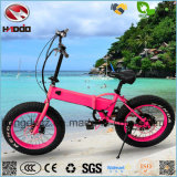 En15194 250W Fat Tire Folding Ebike Electric Bicycle for Child