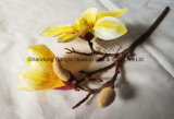 Silk Flower Artificial Flower
