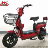 Made in China Cheap E-Bike Electric Motorbike