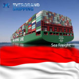 Competitive Ocean & Sea Freight Shipping From China to Indonesia/Jakarta/Belawan/Semarang