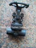 Forged Steel Through Way China Globe Valve (J6(1)1Y)