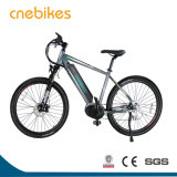 Fashionable Mountain Electric Bike Ebike with Battery