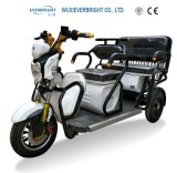 China 3 Wheel Mobility Motorcycle, Handicapped Tricycle