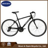 Good Price Mountain Bike Fitness Bikes (FX7.0)