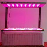 New Big Smart Integrated DIY LED Grow Light
