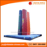 Inflatable Advertising Climbing Wall for Business (T7-510)