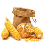 China Origin Non-Gmo Dried Corn/Maize