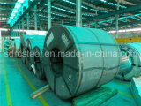 DC04ze Galvanized Steel Coil (Sheet)