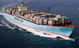 China Freight Forwarder Container Sea Freight From China to America