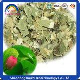 Health Food Manufacturer Wholesale Lotus Leaf Tea