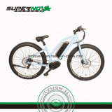 Dirt Ebike with Ce