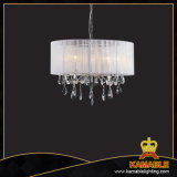 Hotel Modern Decorative Chandelier Shade Lights (cos9245)