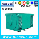 Asynchronous Three Phase Electric High Voltage Motor for Cement Plant