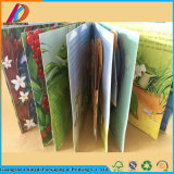 Wholesale Bulk Cardboard Funny Children 3D Book