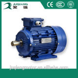 Electric Motor Three Phase Low Speed
