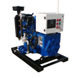 Ce ISO CHP Gas Generator Natural 10kw /Biogas/LPG/Biomass Farm Use