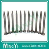 Tungsten Carbide Punch for Mold