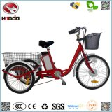 for Cargo 250W Electric Tricycle with Pedal Assisted 3 Wheel Bike Lithium Battery Adult Vehicle