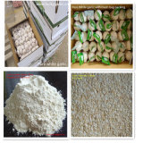New Crop Dried Garlic Granule Hot Sale