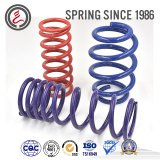 Custom Variable Pitch Cylindrically Helical Spring for Wholesale