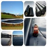 ASTM Geomembranes Type HDPE LDPE Material for Lake Liner Pond Liner