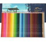 Color Pencil with More Than 60 Colors Triangular Shape