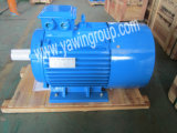 High Efficient Y2 Series Induction Electric Motor