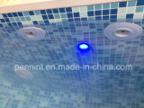 Blue Mosaic Homogeneous/Reinforced PVC Swimming Pool Liner