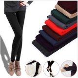 Fashion Women Warm Thick Fleece Stretch Skinny Pants (SR8231)