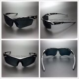 Sport Type Fashion Frame Sunglasses with UV Protection (SG130)