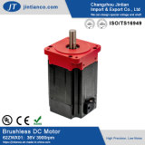 China Supplier High Quality Electric Wheelchair Brushless DC Motor for Forklift