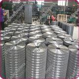 Best Price Electro Galvanized Panel in Rolls Welded Wire Mesh