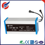 12V 100ah Power Bank Rechargeable Storage Li-Polymer LiFePO4 Li-ion Lithium Battery