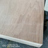1220X2440X2.5-25mm Commercial Plywood with Poplar or Hardwood Core