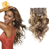 Clip in Hair Extension 100% Virgin Remy Human Hair