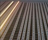 Strip 3528 120 Warm Non Waterproof Natural White 3528 LED