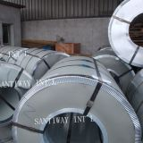 Hot Selling Galvanized Steel Coil