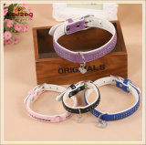 Quality Four Colors Pet Leather Collars /Dog Cat Collars (KC0128)