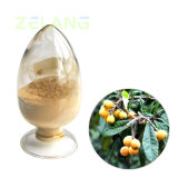 Ursolic Acid 25% Loquat Leaf Extract 98%