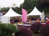 Franch Pagoda Tent 20X20 FT for You Pavilion of Coffee Canopy
