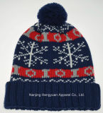 Popular Jacquard Knitted Hats with Pompom (HY041809)