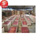 Znsj Cheap Film Faced Plywood for Middle East/Africa