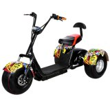 Manufacturer Supplying Single Seat Electric 3 Wheel Citycoco Scooter