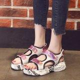 Hot Sales Fashionable Women Sandals