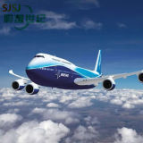 Air Cargo Cargo Agent From China to Philippines Professional Fast Shipping Logistics Services