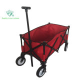 Buggy Outdoor Collapsible Folding Beach Toy Wagon
