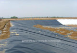 Water Storage HDPE Geomembrane ASTM Standard