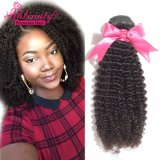 Wholesale Price Human Hair Weaving Kinky Curly Virgin Peruvian Hair