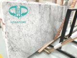 Cheap Carrara/Pure White Marble for Indoor Flooring/Wall Tile