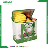 Eco-Friend Recycle Carring Shopping Bag (HBE-G-2)